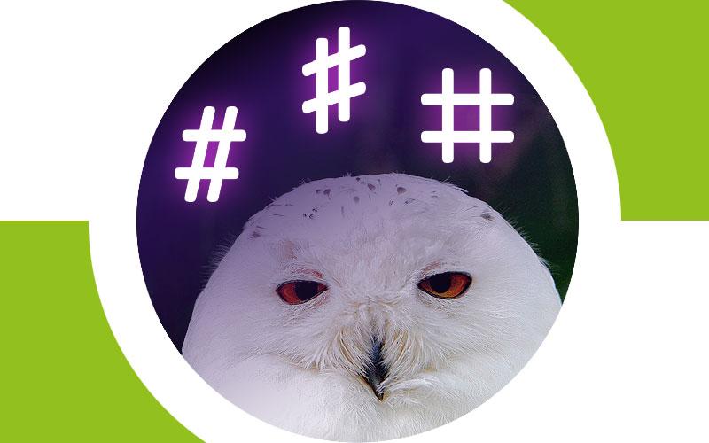 Hashtag, Sharp or TicTacToe?